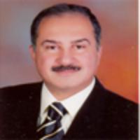 Ahmed Ali Hamed Saad Fadda